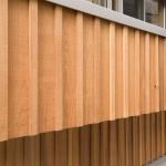 建築写真 木外壁竣工写真